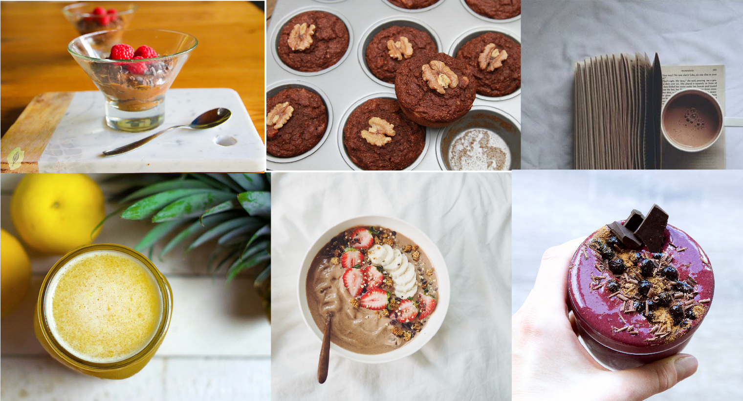 Free winter recipe ebook omniblend australia pdf version of our winter recipe ebook packed with amazing recipes from australia leading health professionals there will also be a download link forumfinder Choice Image