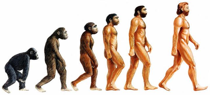 omniblend australia our story evolution of man