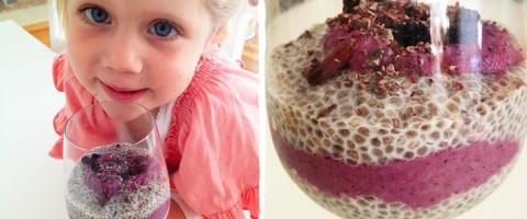 Chia Pudding Blog Recipe